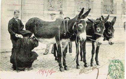 anier-traite-et-vend-le-lait-d-anesse-au-marche